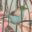 Close up detail of Birdcage