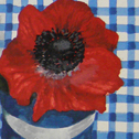 Close up detail of Blue Check Anemones