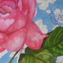Close up detail of Roses