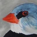 Close up detail of Three Little Birds