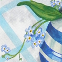 Close up detail of Forget-me-nots